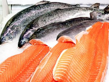 salmonbtm