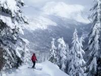 Seattle GPS X Stevens Pass: 免費滑雪體驗游招募中