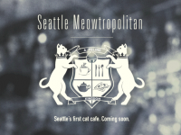 Meowtropolitan · 西雅图的第一间猫咪咖啡馆