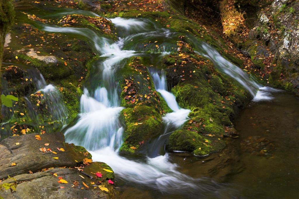 South Cascades
