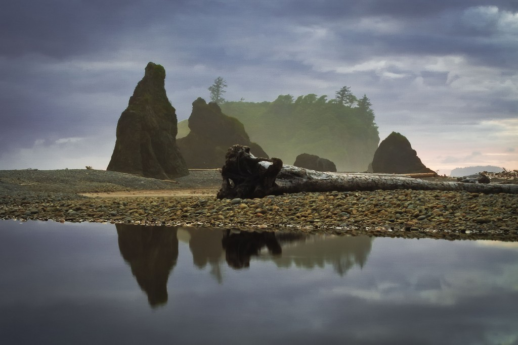 Olympic National Park by Tucapel