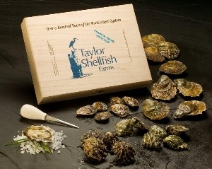Oyster_GiftBox-New