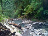 探索 Oregon 五大地熱溫泉之旅